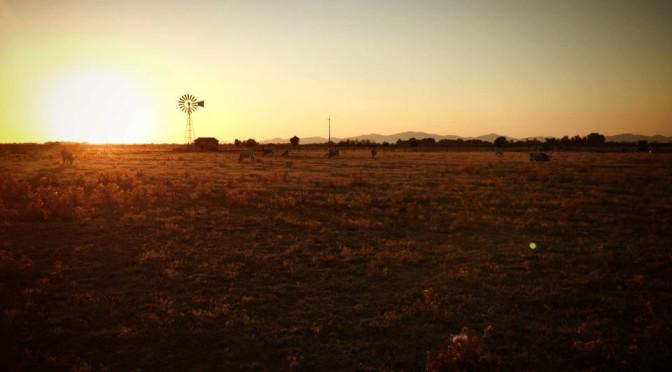 parco-maremma-tramonto-percorso-in-bici-banderas